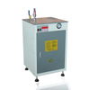 CE Certified Mini Electric Steam Boiler